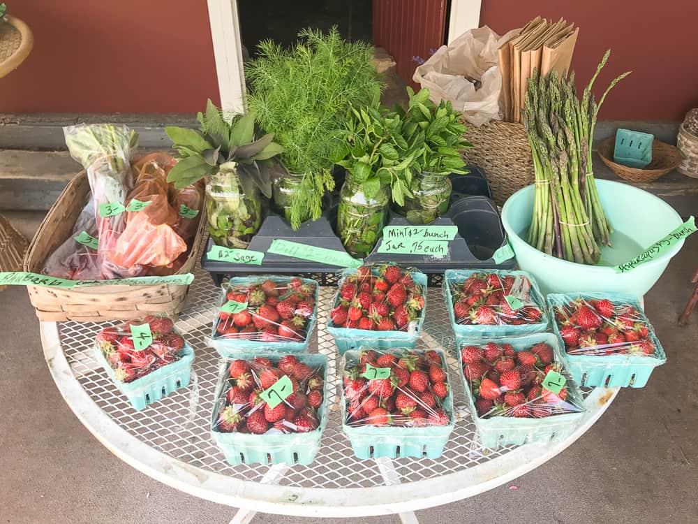 usa małe farmy truskawki