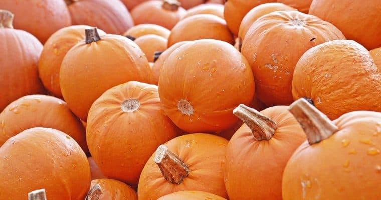 Święto Dziękczynienia w czasach epidemii