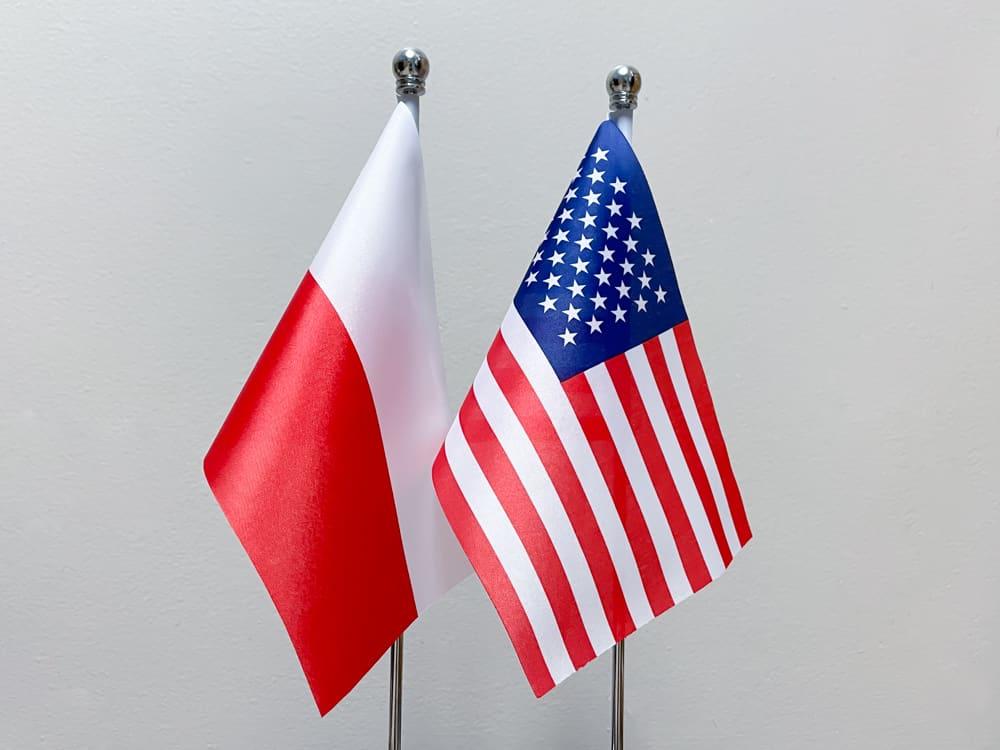 Polonia w USA język